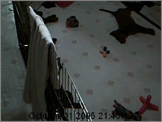 My WebCam Image